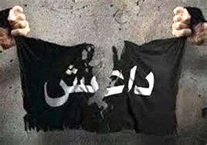 پیرمردهای اعدامگر داعش +تصاویر