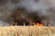 آمریکا مزارع سوریه را به آتش کشید
