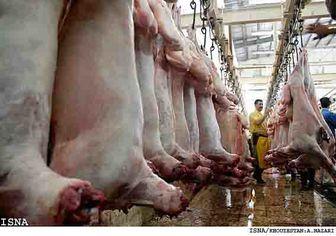 واردات گوشت از قرقیزستان و مغولستان