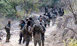 اعزام تروریستهای القاعده از سوریه به مأرب یمن