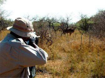 شکارچیان متخلف محیطبان ملایری را مجروح کردند