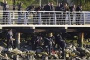 کشف جسد 2 خواهر عربستانی در نیویورک