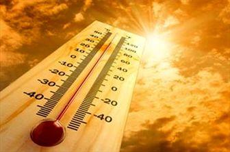 آیا گرم شدن زمین در کوتاه شدن قد تاثیر دارد؟!