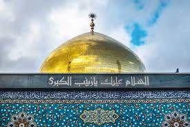پاسخ کوبنده عالم سنی به وهابیون درباره حضرت زینب (س)/فیلم