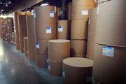 پشت پرده دو شرکت ارز بگیر برای واردات کاغذ روزنامه