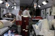 آخرین آمار از جان باختگان راهپیمایی اربعین حسینی