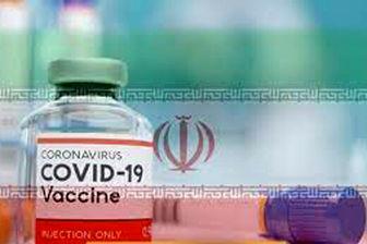 ظرفیت تولید واکسن برکت باید در ماه به ٣٠ میلیون دوز برسد