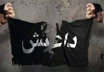 اعدام فجیع یک مرد عراقی به دست جلاد داعش+تصاویر