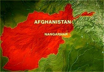 ارتش افغانستان فرمانده داعش را به هلاکت رساند