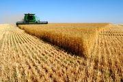 پرداخت وام اشتغال روستایی به کشاورزان دچار مشکل شد