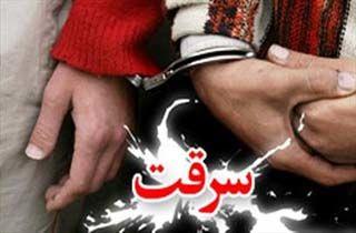 دستگیری بیش از 20 سارق و کشف 230 فقره سرقت
