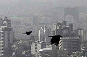 هوای پایتخت در آستانه هشدار