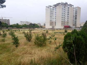 واکنش بنیاد مستضعفان به ماجرای ساخت برج در «باغ برره»