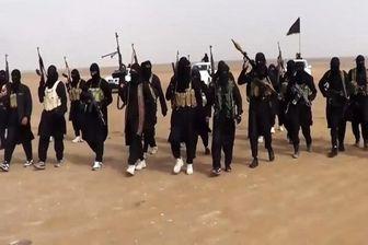 بازداشت یک سرکرده داعش در موصل