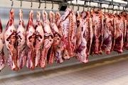 تاثیر گوشت قرمز بر بهبود بیماری ام اس