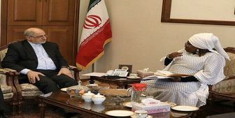 آمادگی اتحادیه آفریقا برای همکاری با ایران