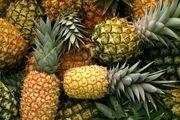 جولان میوه های وارداتی در بازار