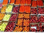 پرتقال و موز در صدر میوههای وارداتی به ایران