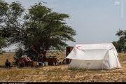 وضعیت اردوگاه سیل زدگان حمیدیه خوزستان/ گزارش تصویری