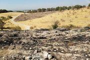 پارک چیتگر تهران هم در آتش سوخت/ فیلم