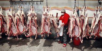 ثبات قیمت در بازار گوشت گوسفندی