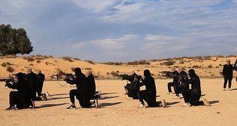 ۱۴ شبه نظامی در صحرای سینای مصر کشته شدند