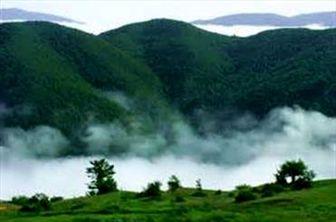 اهداف تبلیغاتی دولت برای ساخت جاده در جنگل ابر