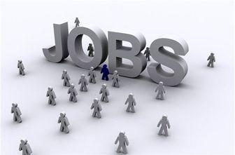 ساماندهی 80 رسته شغلی تا پایان سال