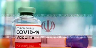 """چند درصد از مردم کشور """"واکسن ایرانی کرونا"""" میزنند؟"""