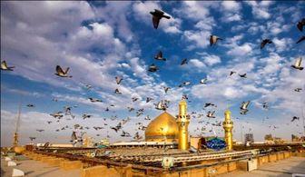چهار مرجع بزرگ نجف اشرف در یک قاب/ عکس