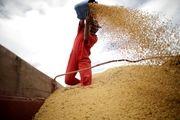 احتکار مواد غذایی در چین