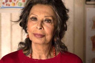 بازیگر مردِ ایرانی همبازی «سوفیا لورن» می شود