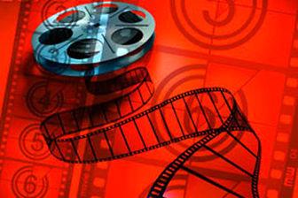فیلم سینمایی «قاتل بروس لی» را یک ایرانی می سازد
