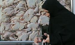 پشت پرده چانهزنی برای افزایش قیمت مرغ