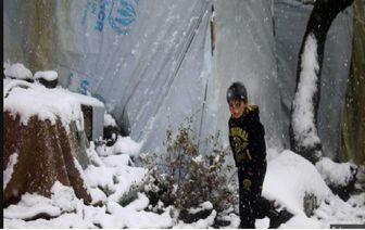 سرما 35 کودک آواره سوری را کشت
