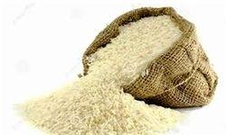 بازرگانی دولتی ۱۸ میلیون دلار دیگر برنج آمریکایی وارد کرد