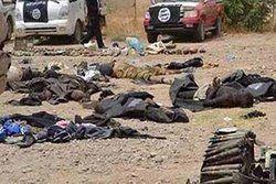 کشته شدن ۲۰ سرباز سوری در حمله داعش به شرق حمص