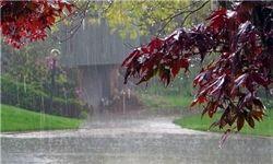 «۲۲بهمن» آسمان تهران بارانی است