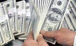 دولت می خواهد دلار گران بماند؟/ اظهار نظر عجیب مشاور رئیس جمهور درباره قیمت دلار