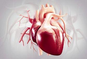 چه بخوریم که قلبمان سالم بماند؟