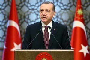 اردوغان از پشت ایران درآمد