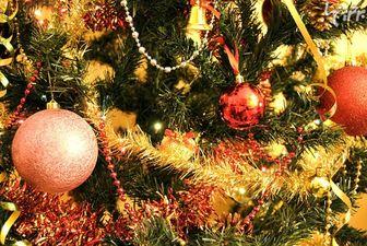 درخت کریسمس؛ ۴ میلیون تومان!