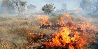 تلاش برای مهار آتشسوزی جنگلهای کوه نارک گچساران