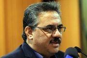 سرپرست سازمان توسعه تجارت ایران: دولت باید بپذیرد که خطاهایی در مقابل صادرکنندگان  دارد