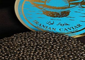 چرا ایرانیان سهمی از این غذا ندارند؟