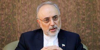 صالحی: نامزد انتخابات ریاست جمهوری نمیشوم