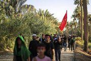 طریق العلما در راهپیمایی اربعین کجاست؟ /گزارش تصویری