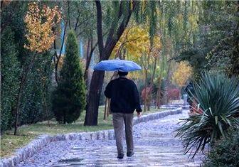 پایتخت امروز ۲۲ بهمن بارانی میشود