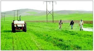اشتغال ۱ میلیارد نفر در کشاورزی