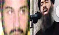 تازهترین اختلافات در گروهک تروریستی تکفیری داعش